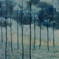 Desire Lines - Camera Obscura (US release: 03 JUN 2013)