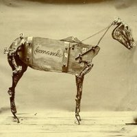 The Horse Comanche - Chadwick Stokes (US release: 03 FEB 2015)
